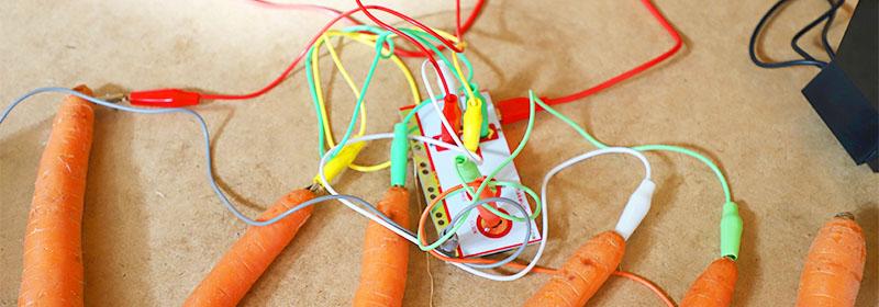 Kuvituskuva porkkanoista ja johdoista