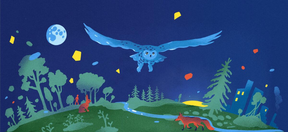 Voimakasvärinen digitaalinen maalaus, jossa paljon sinistä ja vihreää. Horisontti, jossa kasvaa puita. Vasemmalla taivaalla sininen kuu. Keskellä katsojaa päin lentää pöllö siivet auki. Maanpinnassa kettu, jänis ja ihminen. Oikealla kerrostaloja, joiden ikkunoista näkyy valoa.