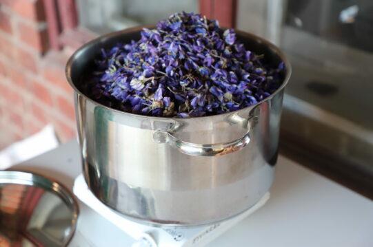 Teräskattila jossa violetin värisiä kukkia.